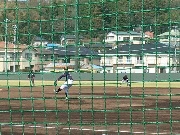 部 明治 野球 学院 大学
