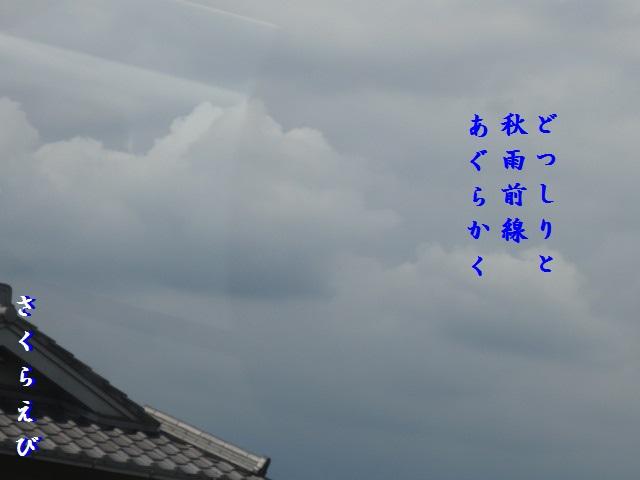 IMG_0264blog43.jpg