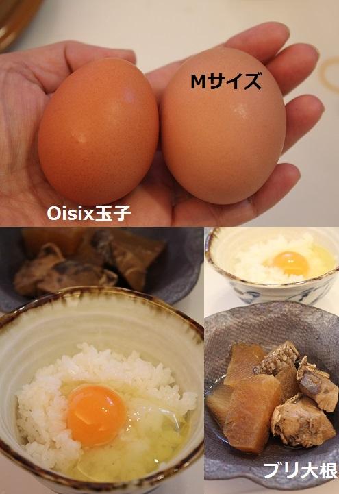 2015_0606_172811-IMG_8433.JPG