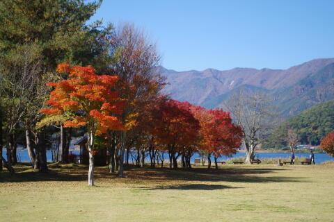 河口湖畔の公園