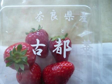 1苺 ことか450.jpg