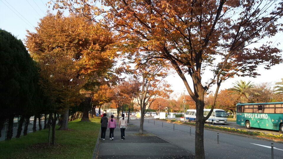 1201 金岡公園散歩