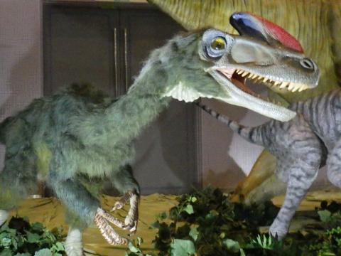 メガ恐竜展2017巨大化の謎にせまる3 グアンロンの生体復元模型