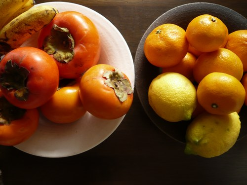 4みかん&レモン 5003.jpg