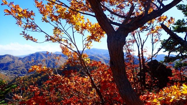 PA181297 11:31札幌岳.jpg
