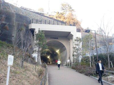 東横フラワー緑道2013年2月