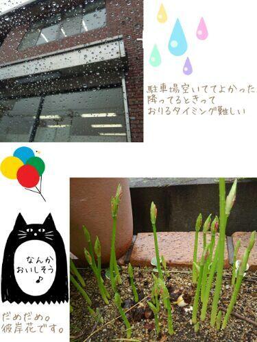 rblog-20170912124646-00.jpg