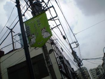 P6021138.JPG