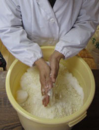塩と糀を揉み解す1.jpg
