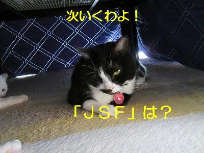 JSFは?.jpg