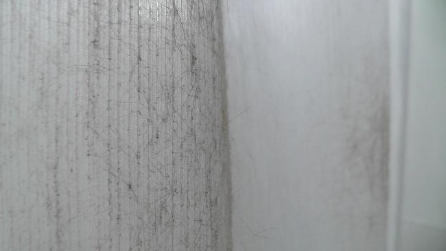 猫に汚されたカーテン