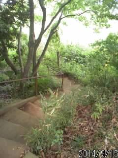 稲荷神社の下
