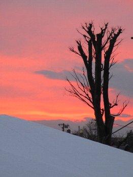 2013 1/15 雪白とピンクの空