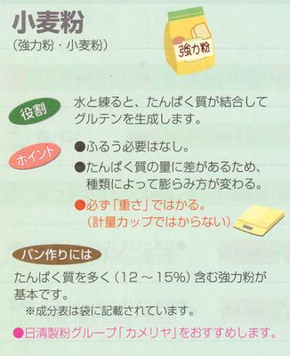 カメリヤ(小).png