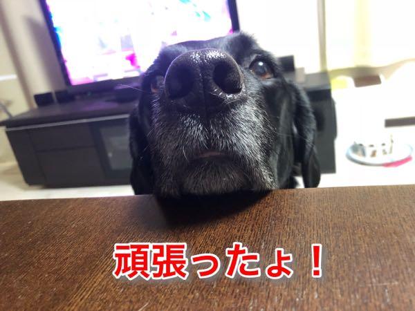 rblog-20180121094131-02.jpg