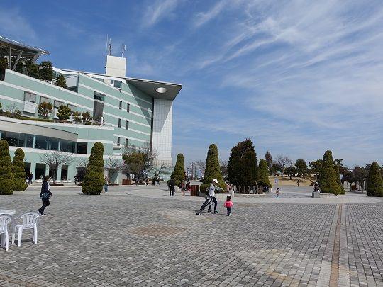 阪神競馬場 天気 馬場