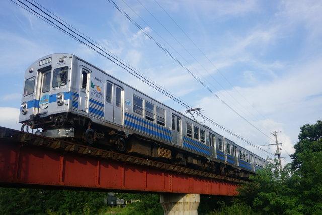 弘南鉄道 青いリンゴ 赤いリンゴ4