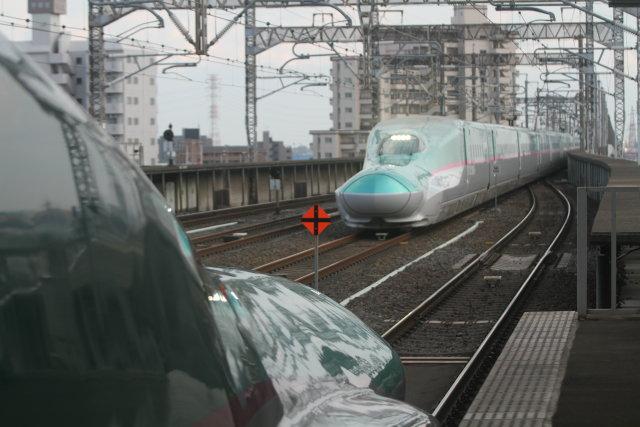 東北新幹線 E5系+E6系宇都宮 通過