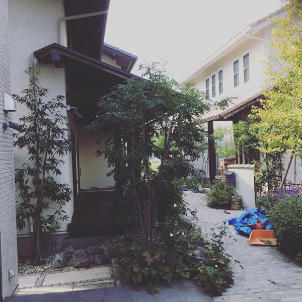 rblog-20181019233337-00.jpg