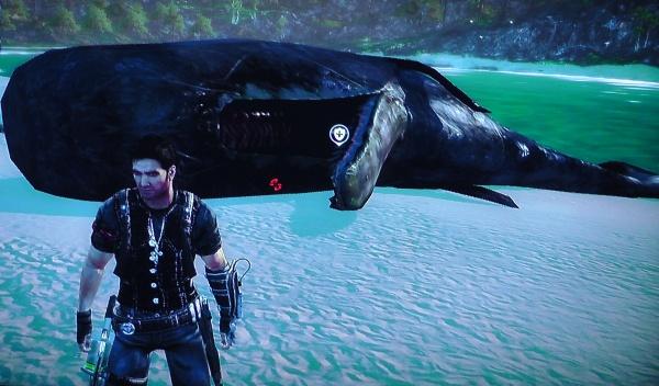 クジラの死体