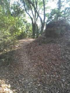 宍ヶ崎櫓の土塁2