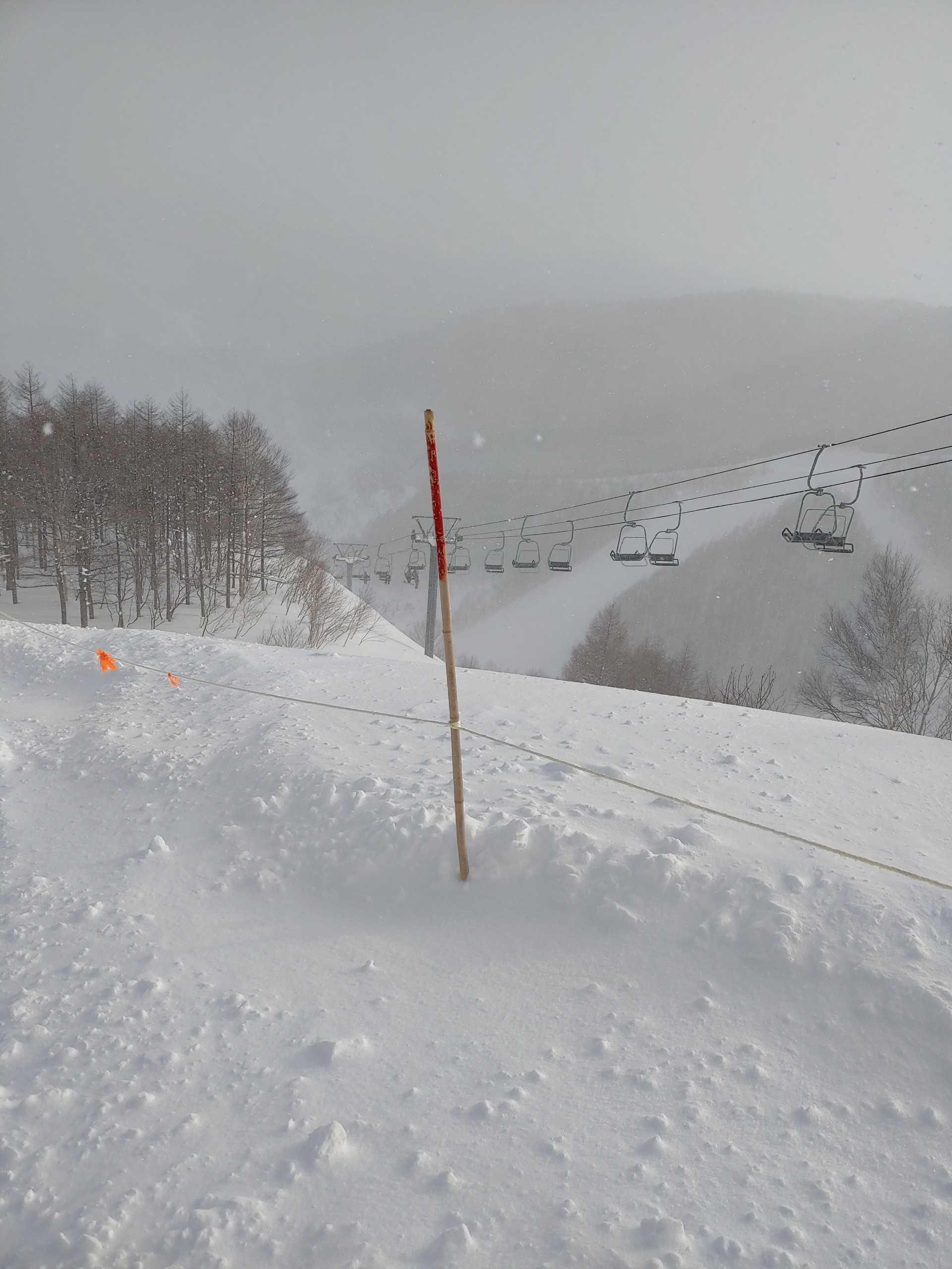 たか 天気 ほ オグナ スキー 場