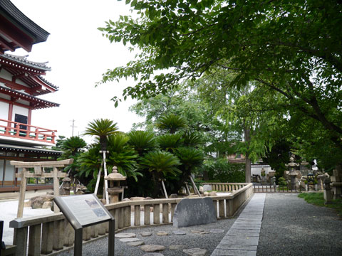 myokokuji4.jpg