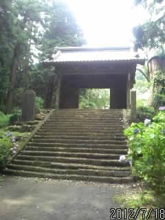 大中寺の門2