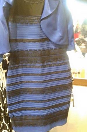何色に見えますか?