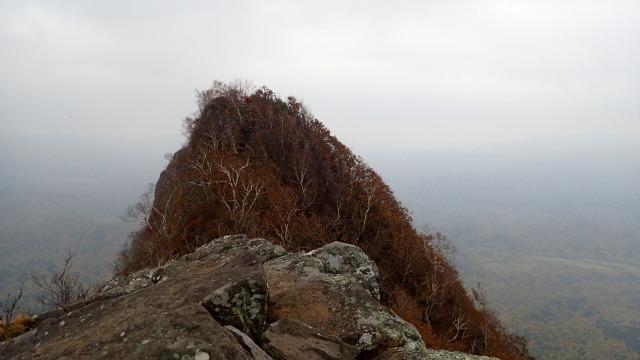 PA161266 11:14山頂を.jpg