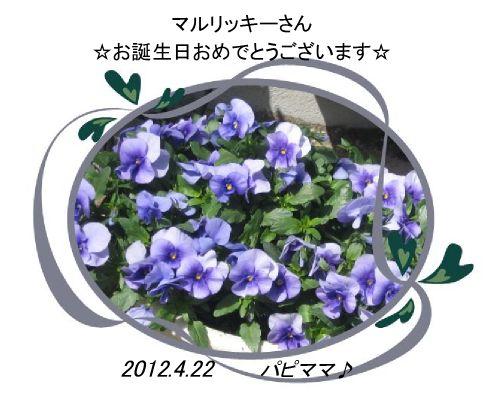 20120422誕生日カードパピママ♪さん