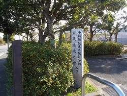 20130103 貝塚山緑地1