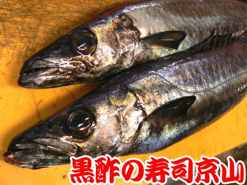 葛飾区 寿司 出前 四つ木.jpg