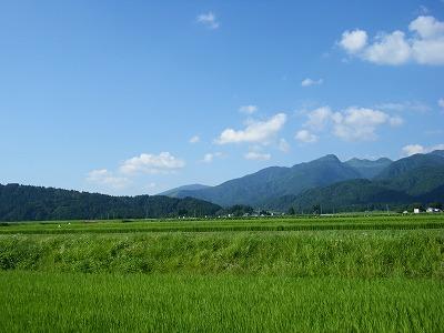 奥越田園2