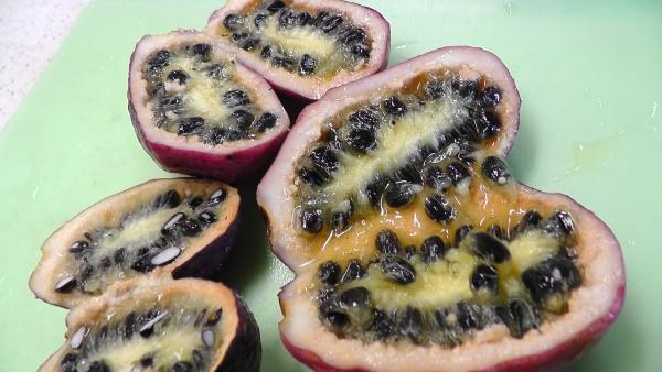 ムベの実を割る 種だらけの果実