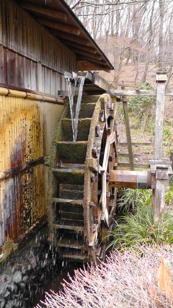 薬師池公園 水車
