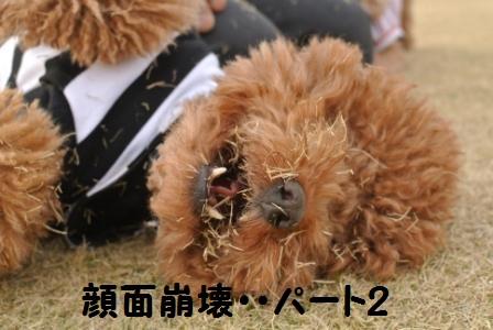 到着後のラン (89).JPG