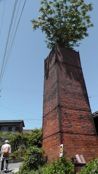 煙突の上に木 常滑やきもの散歩道