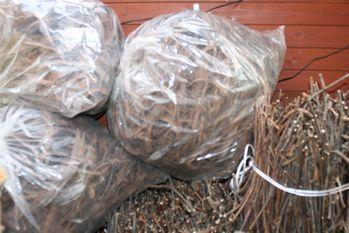 20120403山葡萄の枝と皮の利用.jpg