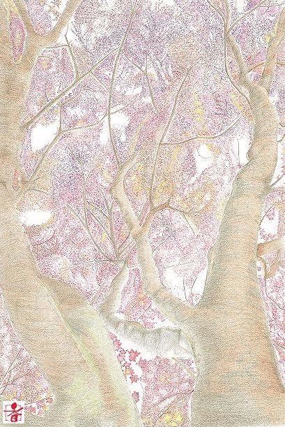 scan-001_k.jpg