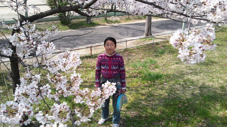 0330 自宅前桜3