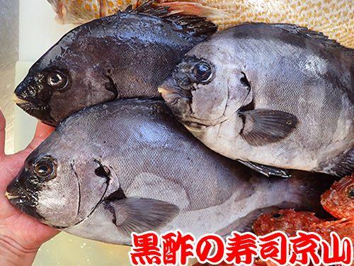 寿司 出前 江戸川区 西小岩
