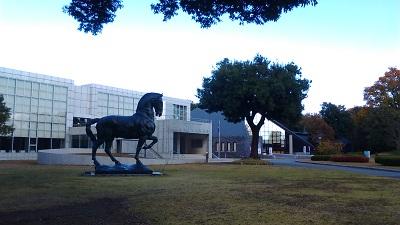 美術館と博物館