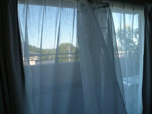 5カーテン洗い 干し3500.jpg