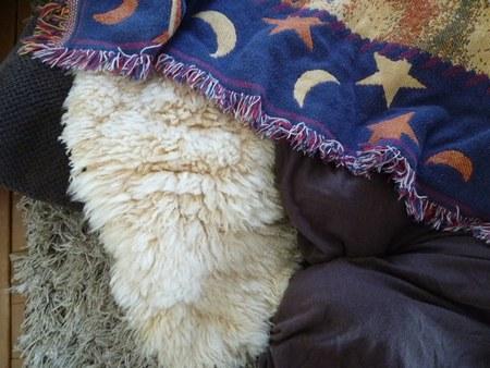 2冬炬燵 羊毛ラグ2450.jpg