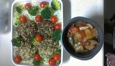 118昼ささみ、げそ野菜ハンバーグサラダ、ラタトゥーユ.jpg