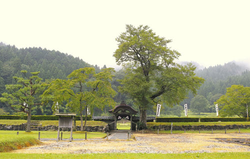 11義景館跡から唐門.jpg