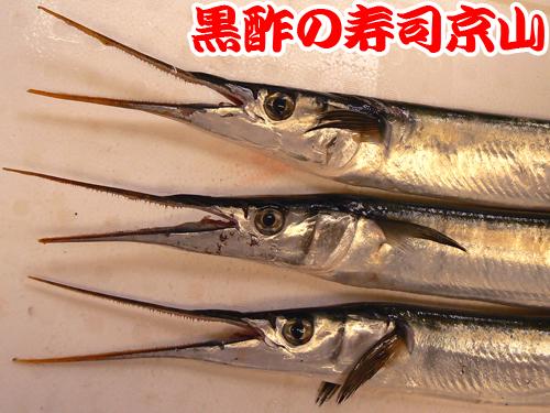 未利用魚 寿司.jpg