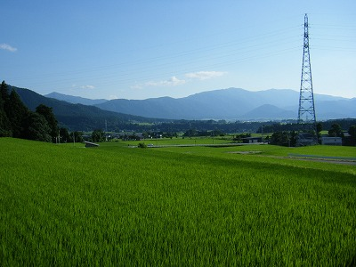 奥越田園4