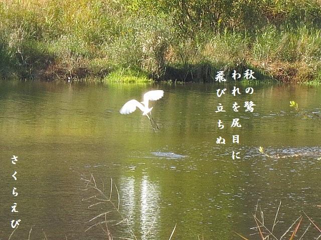 IMG_1316blog44.jpg